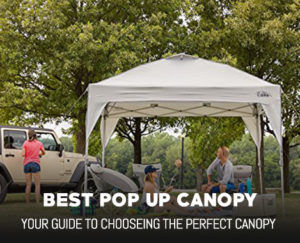 Best Pop Up Canopy, Reviews and More