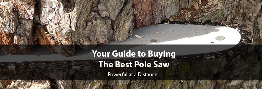 Reviews of the Best Pole Saws: Expert Buying Guide and Recommendations