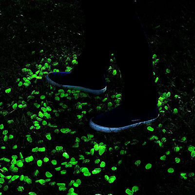 Onson Glow in the Dark Garden Pebbles, Long Lasting Glow in the dark rocks