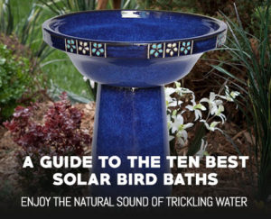 Top 10 Solar Bird Baths – Complete Guide and Reviews