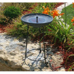 Best Budget Solar Bird Bath