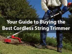 string-trimmer-featured