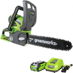 main image best cordless chainsaw Greenworks
