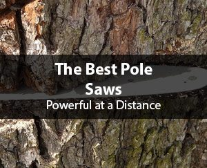 featured-best-pole-saw-reviews