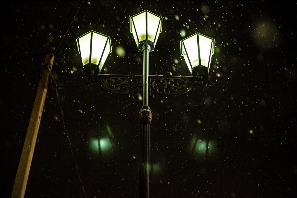 Can You Leave Solar Lights Out in the Rain
